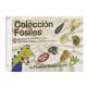 COLECCION FOSILES EN ESTUCHE REF 13517002