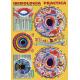 FICHA IRIDOLOGIA PRACTICA LA SALUD A TRAVES DE TUS OJOS (29,5 x 21 cm) REF 4037