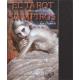 EL TAROT DE LOS VAMPIROS (MAS CARTAS)