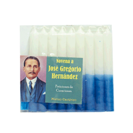 NOVENARIO A JOSE GREGORIO HERNANDEZ