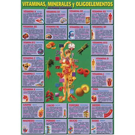 FICHA DE VITAMINAS MINERALES Y OLIGOELEMENTOS  (29,5  x 21 cm)