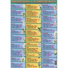 FICHA DE PSICOTERAPIA Y FLORES DE BACH (29,5 x 21 cm)