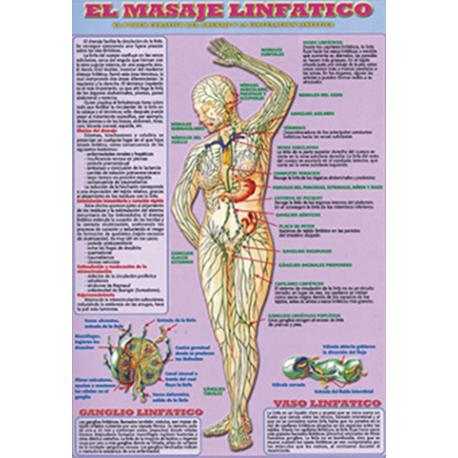 FICHA  EL MASAJE LINFATICO  (29,5  x 21 cm)