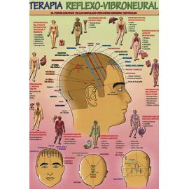 FICHA TERAPIA REFLEXO-VIBRONEURAL (29,5 x 21 cm) REF 4722