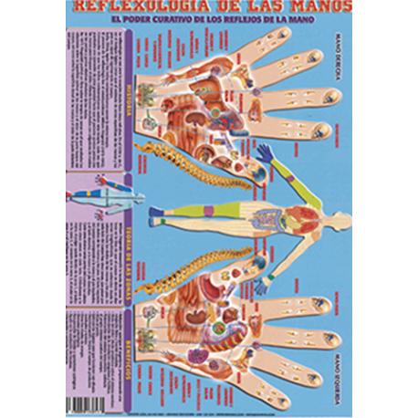 FICHA REFLEXOLOGIA DE LAS MANOS (29,5 x 21 cm)